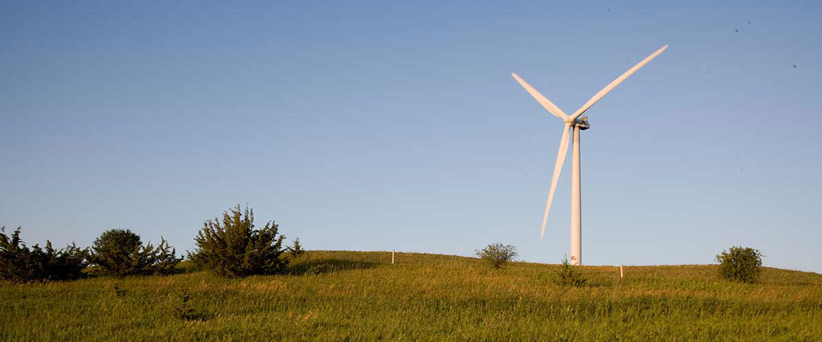 Wind turbine in field.