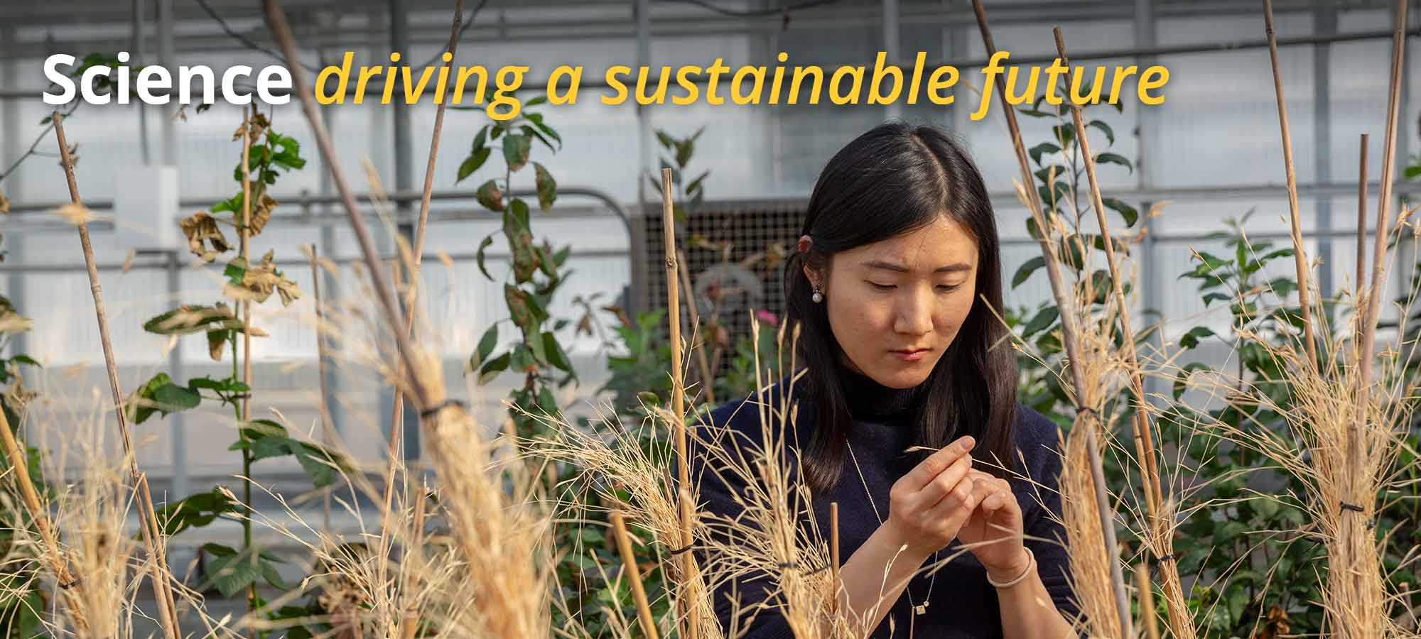 Science driving a sustainable future