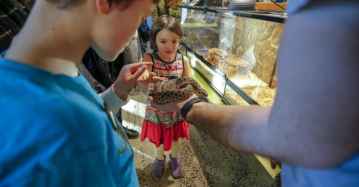 Two kids touch a snake during Space Fest at the Bell Museum