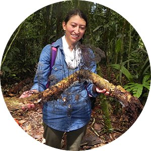 Female graduate student holding fungi-covered branch while doing field research abroad