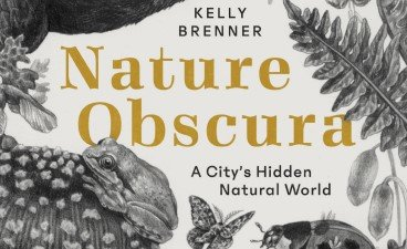 Kelly Brenner, Nature Obscura